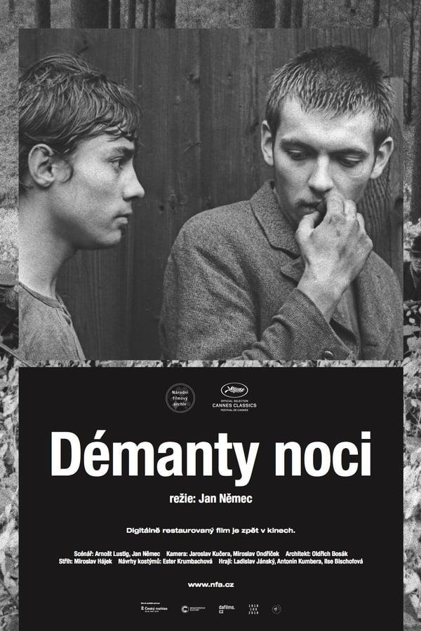 Read more about the article Les diamants de la nuit