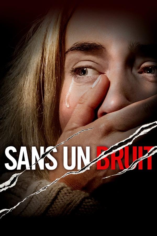 Read more about the article Sans un bruit