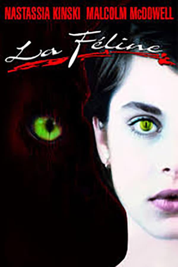Read more about the article Chronique audio #11: La Féline