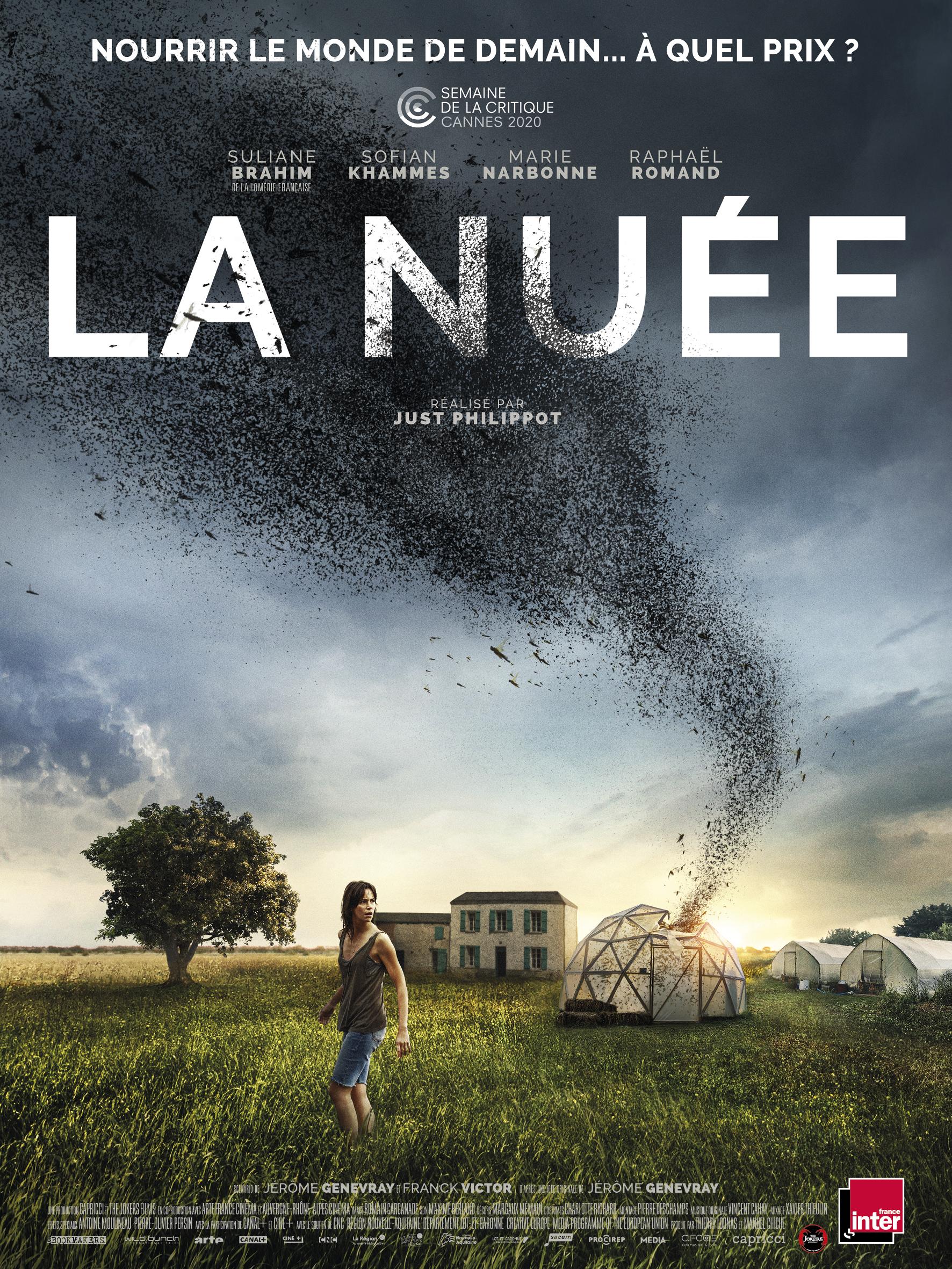 Read more about the article La nuée